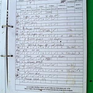Sample record sheet used at the Apiary