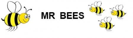 Mr Bees